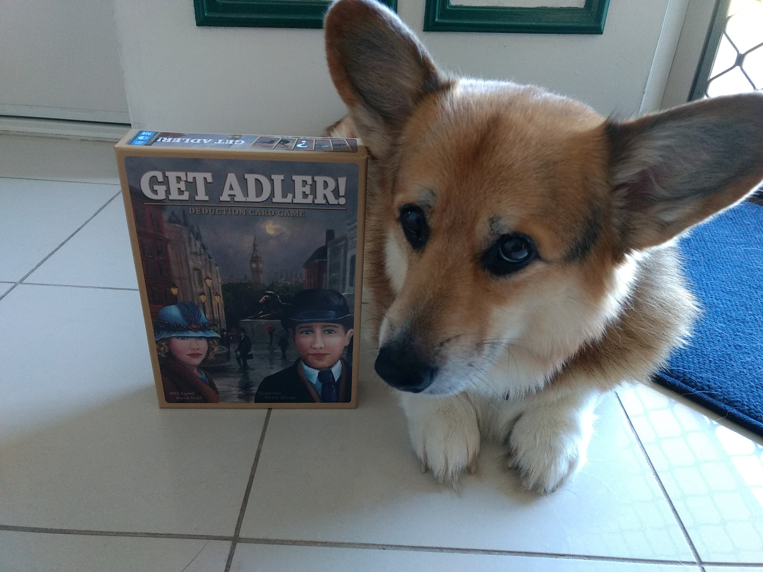 r2r-board-game-review-get-adler-corgi