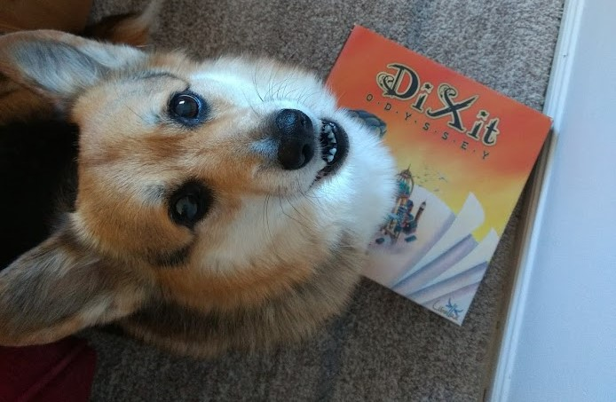 Roll-to-review-board-game-Dixit-Corgi