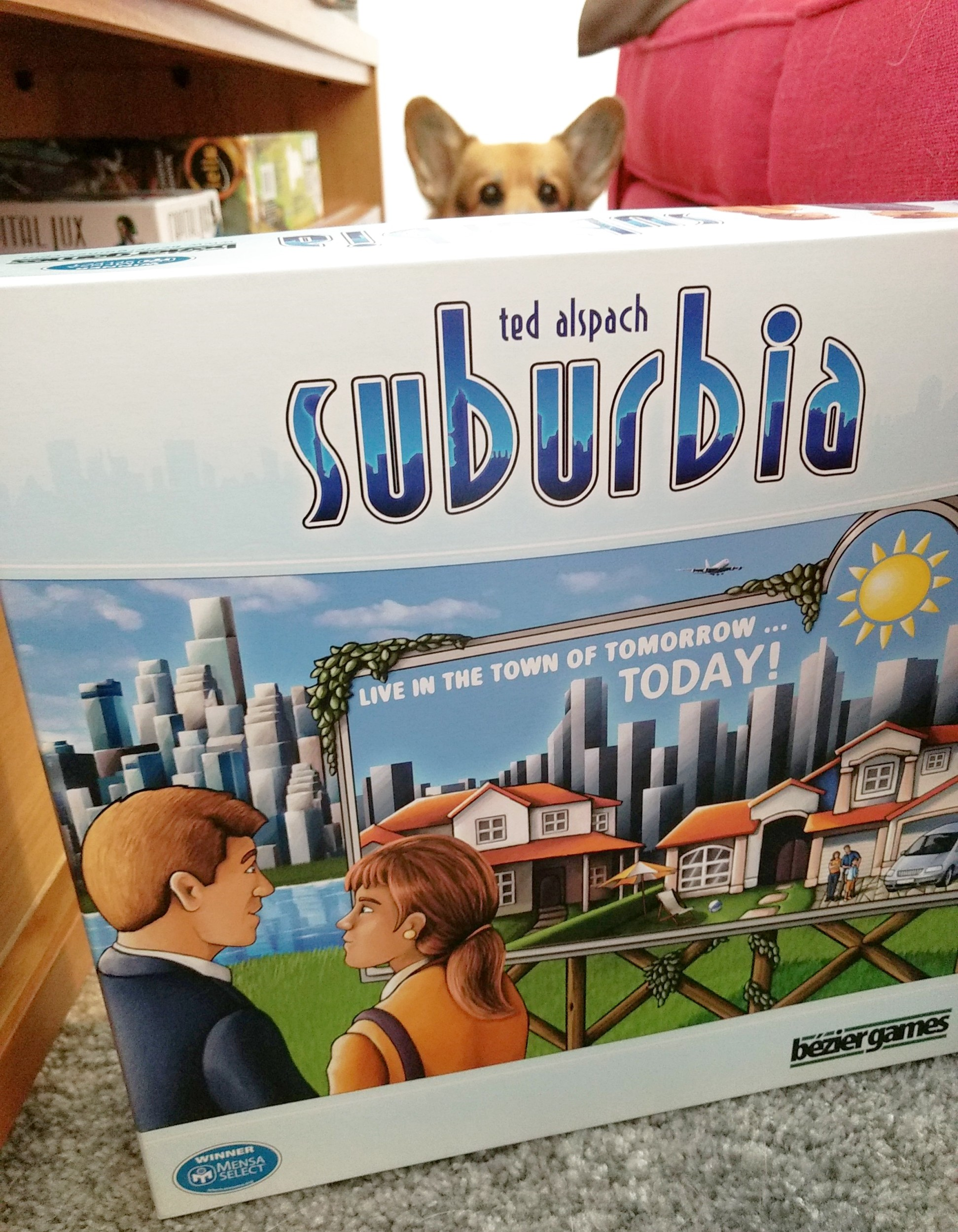 roll-to-review-board-game-suburbia-corgi