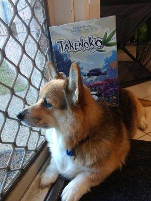roll-to-review-board-game-Takenoko-corgi