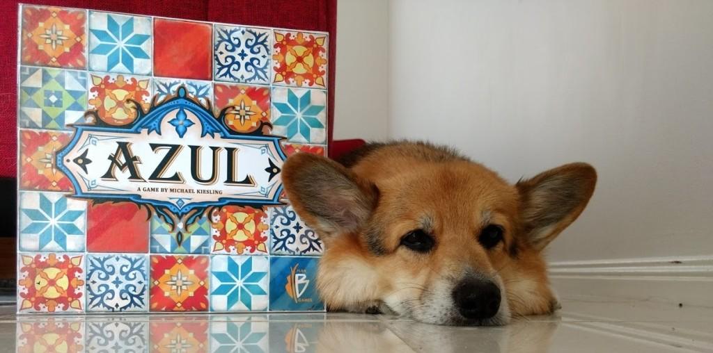 Tired corgi laying down next to the Azul box