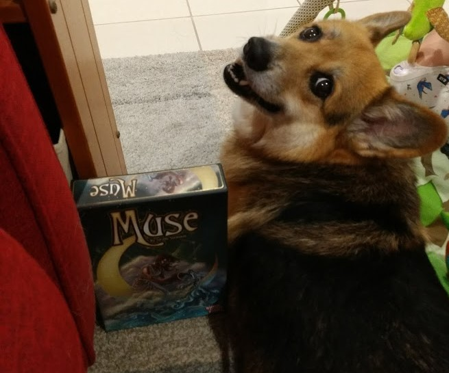 Corgi looks back over his shoulder and over a copy of Muse. He looks happy.