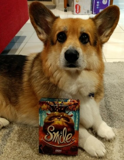 Roll-to-review-board-game-Smile-corgi.jpg