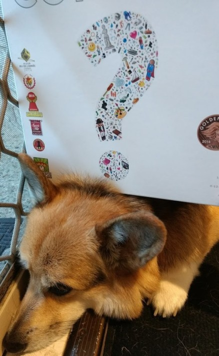Roll-to-review-board-game-concept-corgi
