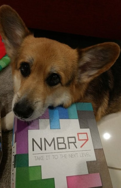 Roll-to-review-board-games-NMBR-9-corgi