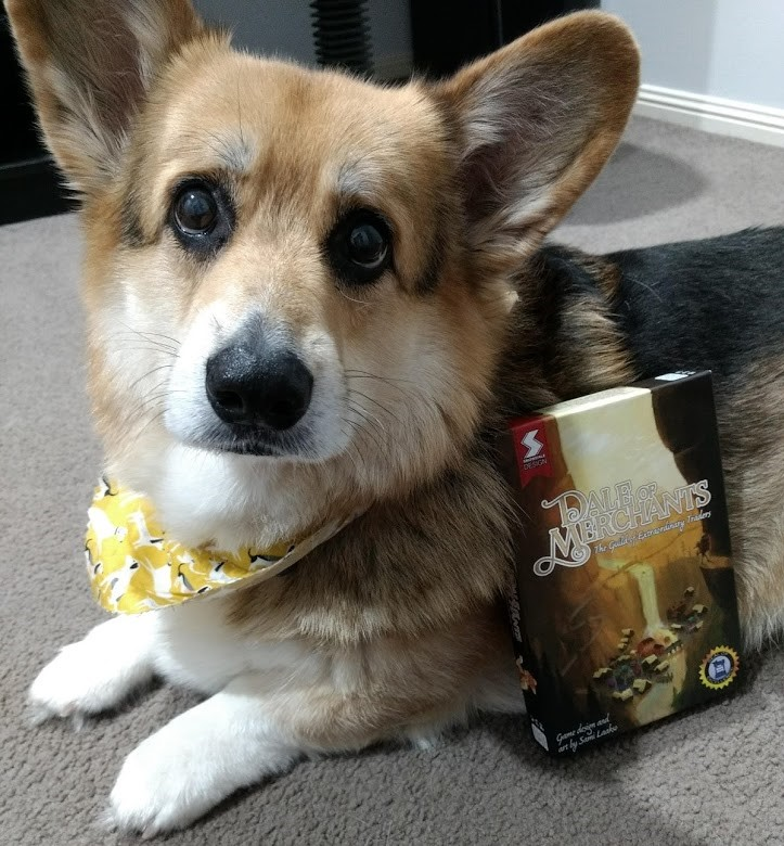 Ridiculously handsome corgi with a bandana and the box for Dale of Merchants