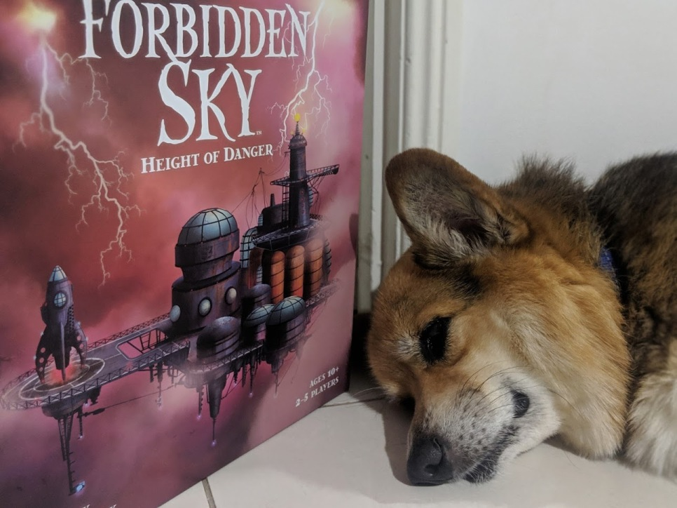 Corgi taking a nap next to Forbidden Sky
