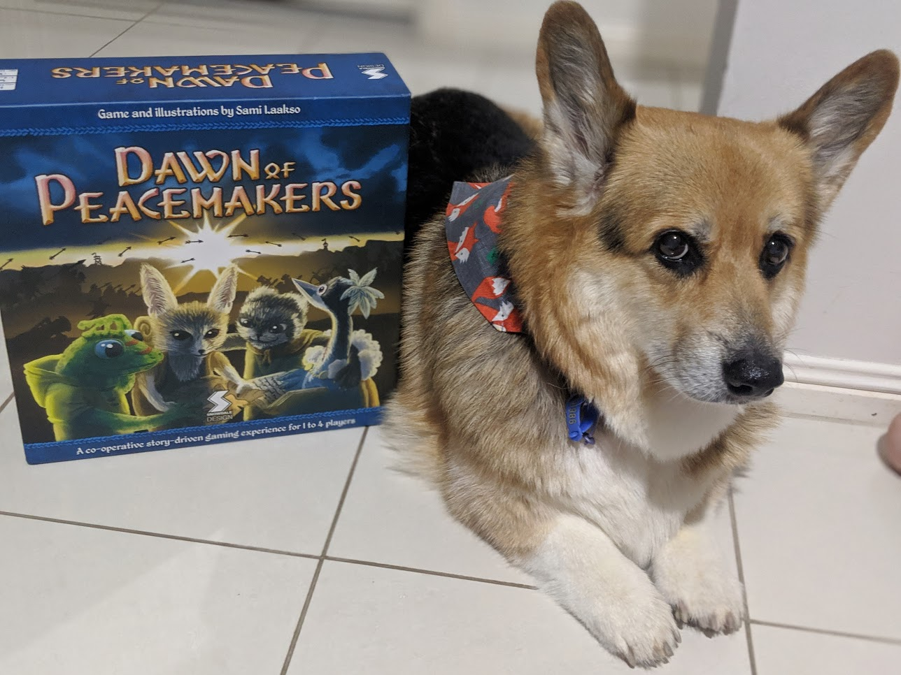 Corgi sitting cutely next to Dawn of the Peacemakers box.