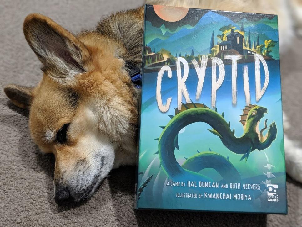 Corgi sleeping under the Cryptid box. he cute.