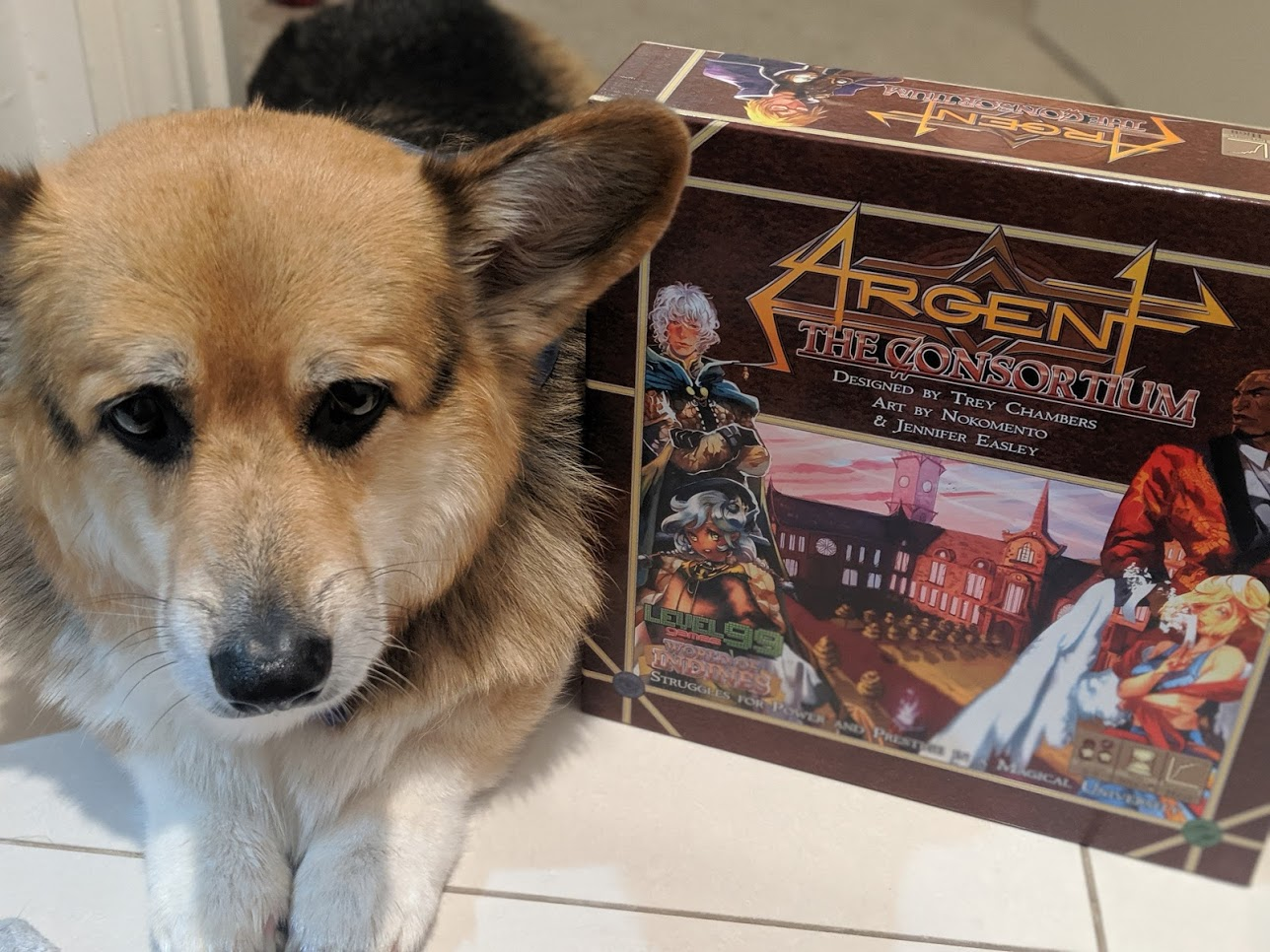 Cute ass corgi laying next to Argent the Consortium box.