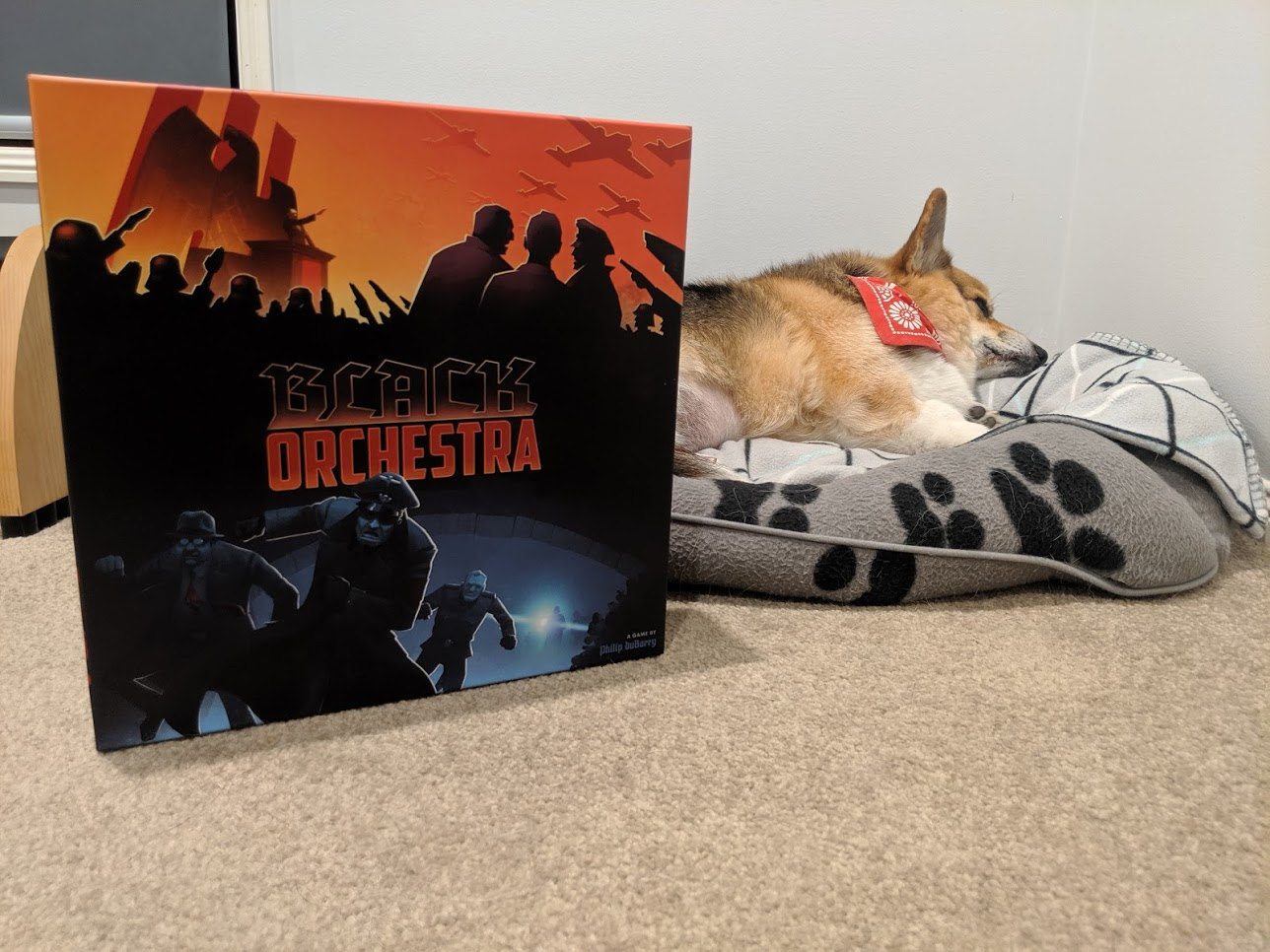Black Orchestra box next to a sleeping corgi. It's pretty cute.