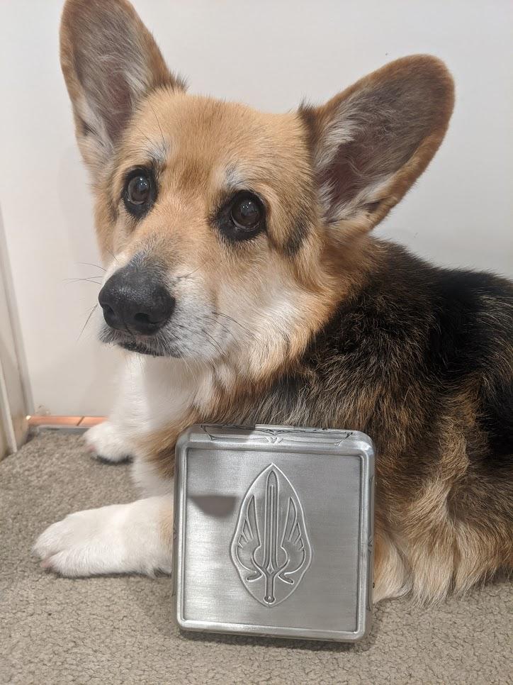 Gorgeous corgi next to the box of Tellstones: King's Gambit.